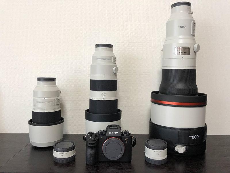 ソニー アルファで野鳥撮影:Sony α9 と『FE 200-600mm F5.6-6.3 G OSS』, 『FE 600mm F4 GM OSS』_d0360547_17201073.jpg