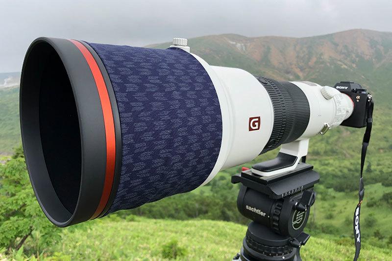 ソニー アルファで野鳥撮影:Sony α9 と『FE 200-600mm F5.6-6.3 G OSS』, 『FE 600mm F4 GM OSS』_d0360547_17241767.jpg