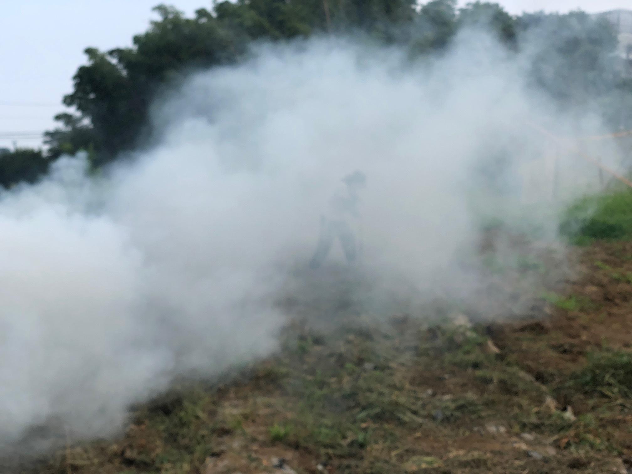 燃やしながら草刈り・・毎日続きます_c0222448_14235805.jpg