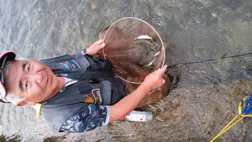 興津川で鮎釣り、先週はフィーバーだったとか。_f0175450_17471834.jpg
