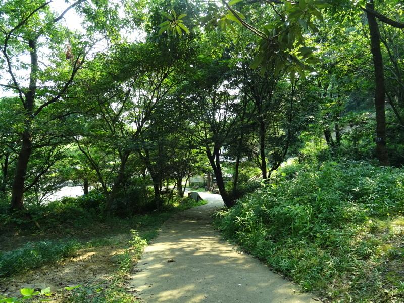 真夏日に ちょこっと作業・・・うみべの森_c0108460_14413853.jpg