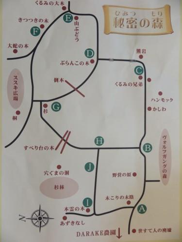 黒田充紀・三佳ご夫妻オーナーのDARAKE農園に隣接する『秘密の森』を散策する_c0075701_21550730.jpg