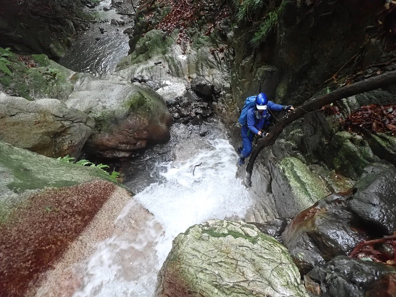 2019/7/20 【鈴鹿】蛇谷 ~ 山行き隊と滝を登る?~_e0403837_15345797.jpg
