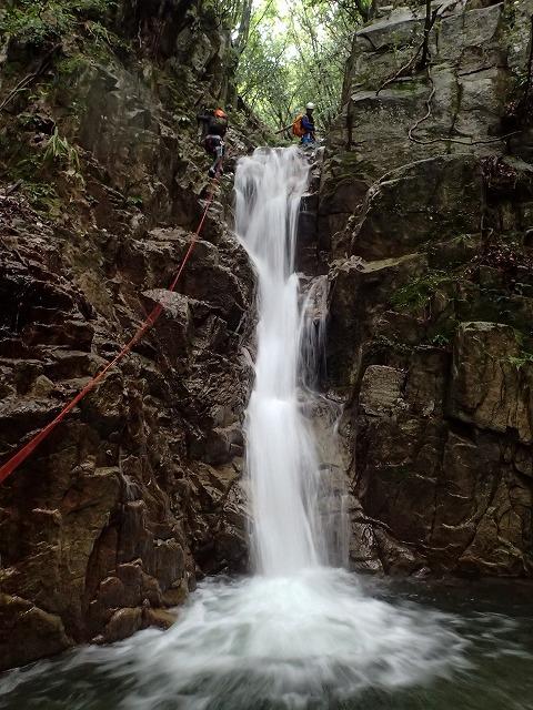 2019/7/20 【鈴鹿】蛇谷 ~ 山行き隊と滝を登る?~_e0403837_15404035.jpg