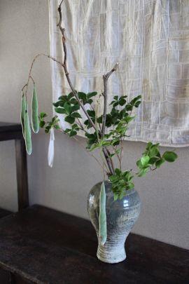 花だより 藤豆とヤシオツツジ_a0279848_13104827.jpg