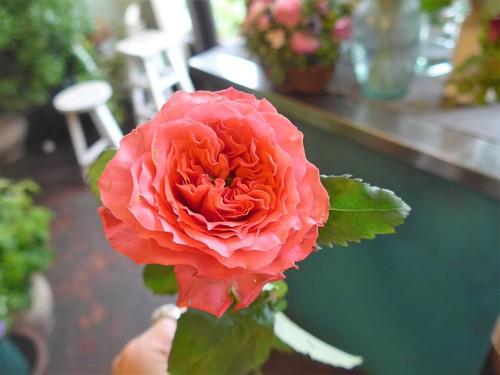 花修行~真っ赤なバラのアレンジメント~_f0232060_2044840.jpg