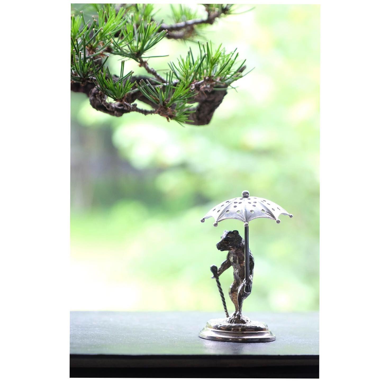 盆栽_a0335867_14123637.jpeg