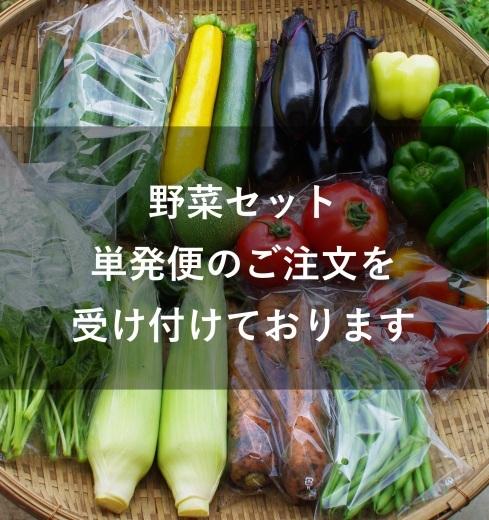野菜セット 単発便のご案内_c0110869_12011643.jpg