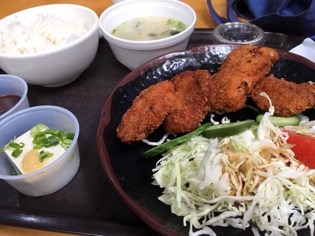 先週末の日本食ー銀だこ、ヒレカツ_e0350971_10085905.jpg