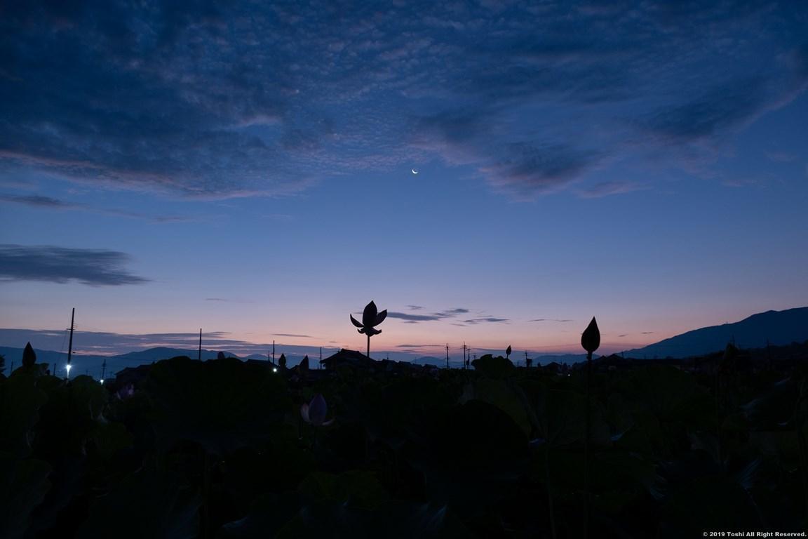 藤原京 夜明け_c0350572_22285748.jpg