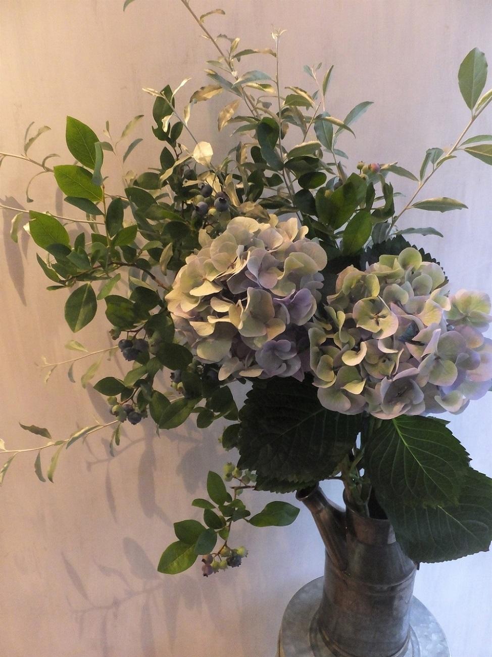 オークリーフ(青木園芸の紫陽花の花束)_f0049672_13163656.jpg