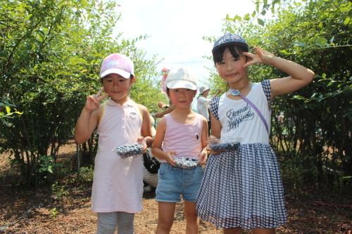 ブルーベリー収穫体験_f0327175_15201054.jpg