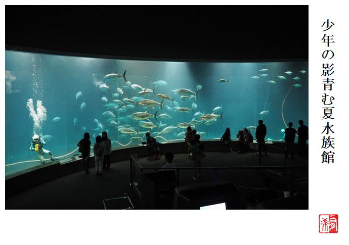 少年の影青む夏水族館_a0248481_07365144.jpg
