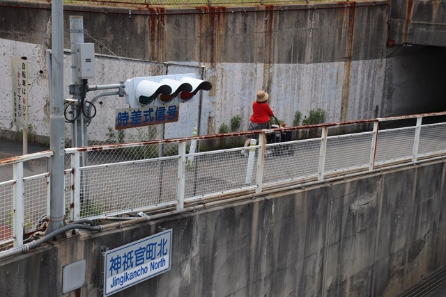 藤田八束の鉄道写真@ここは西宮、東海道本線が町中をはしります・・・瑞風、スーパーはくと、そして貨物列車「桃太郎」がはしる_d0181492_21203132.jpg