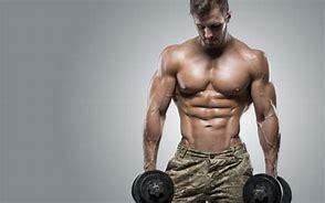 筋肉をつけるために必要なことは何か その2_b0179402_11033788.jpg