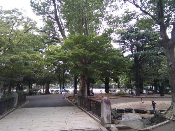 チラシポスティング終了~散策写真<22>・新入会生_a0116217_23361506.jpg