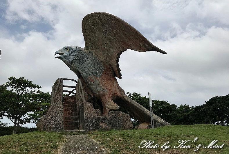 南の島3日目 伊良部島へ・・「エリグロアジサシ」さん「ダイサギ」さん~Σ^)_e0218518_21534618.jpg