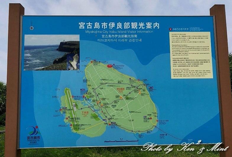 南の島3日目 伊良部島へ・・「エリグロアジサシ」さん「ダイサギ」さん~Σ^)_e0218518_21540487.jpg