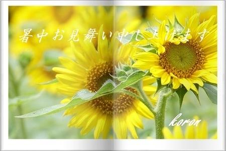 猛暑日_e0374972_643543.jpg