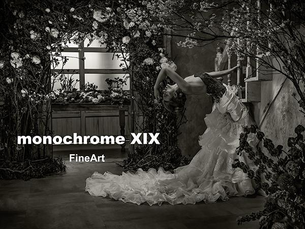 monochrome XIX「FineArt」前半の2週目、明日の6日(火)から始まります!_b0194208_23194781.jpg