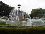 夏の特別イベントレポート②_c0200917_17024848.jpg