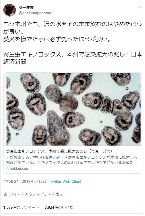 エキノコックス覚え書き_c0162128_10330468.png