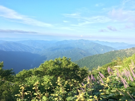 8月4日(日)朝の気温16℃。_c0089831_03583961.jpeg