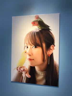 小鳥のアートフェスタ_b0194056_12534181.jpg