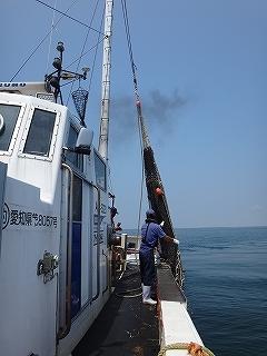 三河湾の観光漁業 漁師体験「まんが漁」_e0064783_05262514.jpg