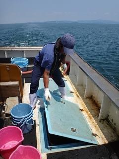 三河湾の観光漁業 漁師体験「まんが漁」_e0064783_05262515.jpg