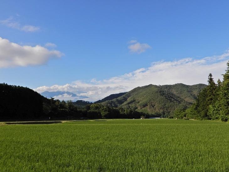 武川町F山さん邸の現場より 15_a0211886_17002172.jpg