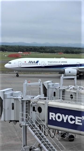 藤田八束の鉄道写真@札幌空港の飛行機達、札幌で見つけた可愛いマンホール_d0181492_22410636.jpg