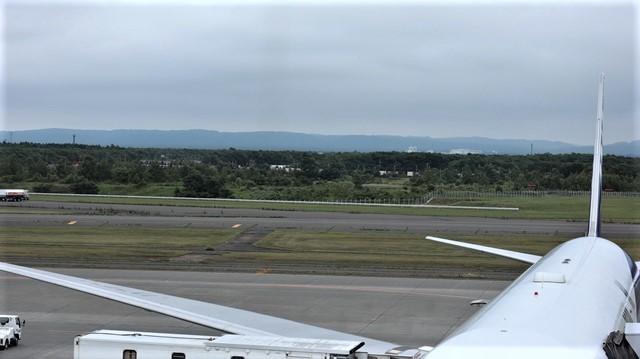 藤田八束の鉄道写真@札幌空港で離発着する飛行機、札幌空港からの貨物列車の写真、楽しい飛行機たちが勢ぞろいした札幌空港_d0181492_22430869.jpg