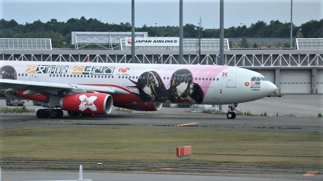藤田八束の鉄道写真@札幌空港で離発着する飛行機、札幌空港からの貨物列車の写真、楽しい飛行機たちが勢ぞろいした札幌空港_d0181492_22444196.jpg
