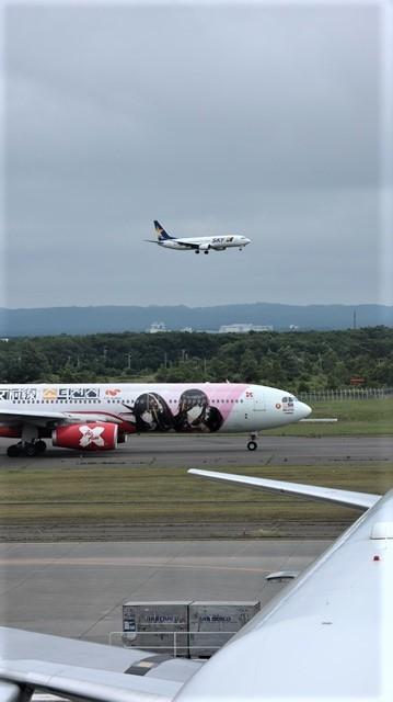 藤田八束の鉄道写真@札幌空港で離発着する飛行機、札幌空港からの貨物列車の写真、楽しい飛行機たちが勢ぞろいした札幌空港_d0181492_22451429.jpg