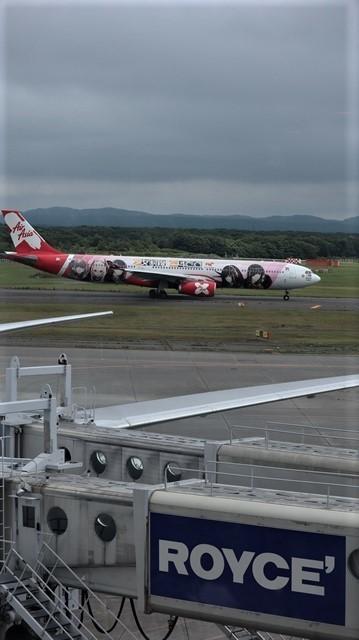 藤田八束の鉄道写真@札幌空港で離発着する飛行機、札幌空港からの貨物列車の写真、楽しい飛行機たちが勢ぞろいした札幌空港_d0181492_22460525.jpg