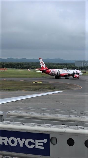 藤田八束の鉄道写真@札幌空港で離発着する飛行機、札幌空港からの貨物列車の写真、楽しい飛行機たちが勢ぞろいした札幌空港_d0181492_22474391.jpg