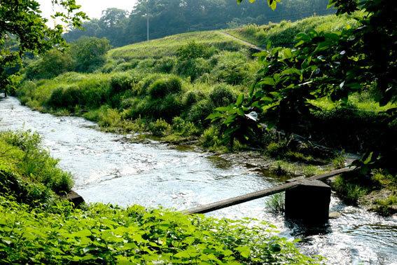 中ノ山の一本橋_b0145296_14052213.jpg