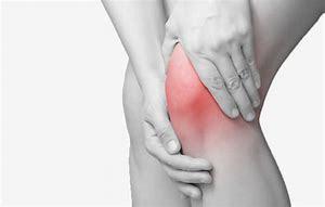 膝関節に問題がある方は…レッグカールで腿の筋肉を鍛えましょう_b0179402_11411870.jpg