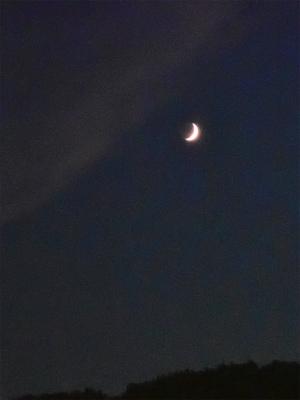 夕暮れの月を見ながら・・・_c0336902_21171856.jpg