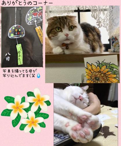 ジジちゃんどらみちゃん リンゴちゃん_f0375804_08070442.jpg
