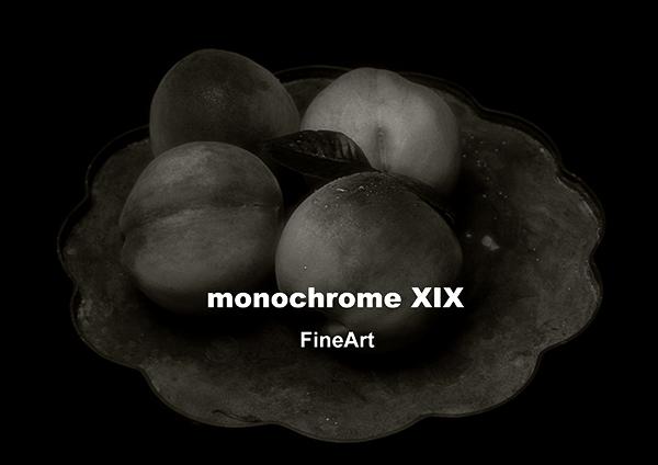monochrome XIX「FineArt」前半の2週目始まりました、猛暑の中をご来館頂きました皆様、ありがとうございました。_b0194208_23062995.jpg