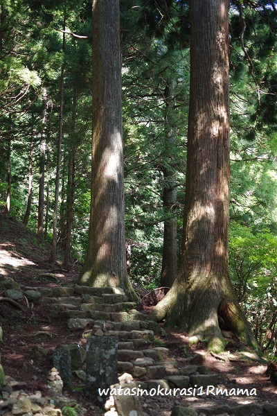 登山トレーニング リベンジ_c0365711_19222317.jpg