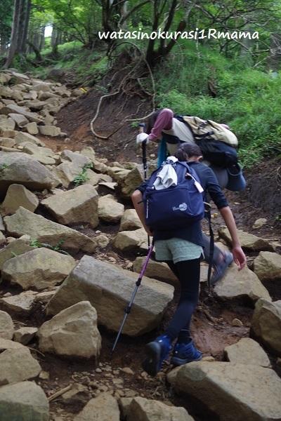 登山トレーニング リベンジ_c0365711_19225411.jpg
