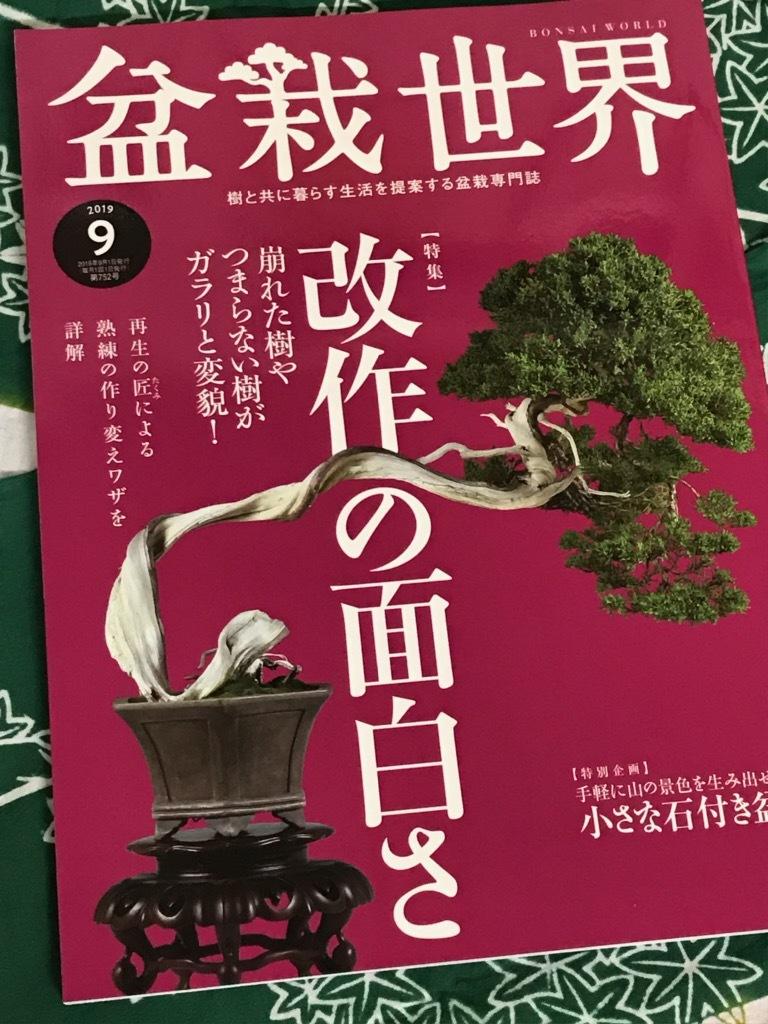 盆栽世界2019.9・・・藤原の連載はお休み・・・_f0170915_14593998.jpg