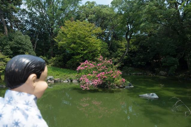 京都御所の鮮やかサルスベリ_e0369736_21232150.jpg