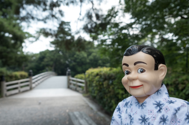 京都御所の鮮やかサルスベリ_e0369736_21232280.jpg