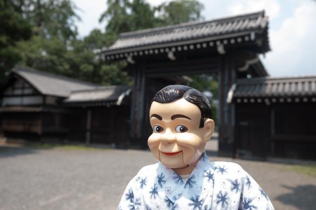 京都御所の鮮やかサルスベリ_e0369736_22212551.jpg