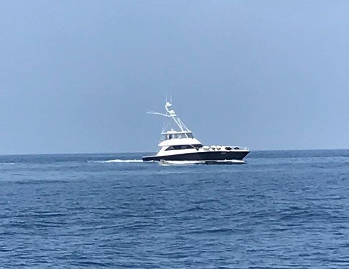 BZ艇さんが遠州灘でトータル5本_f0009039_17340239.jpg