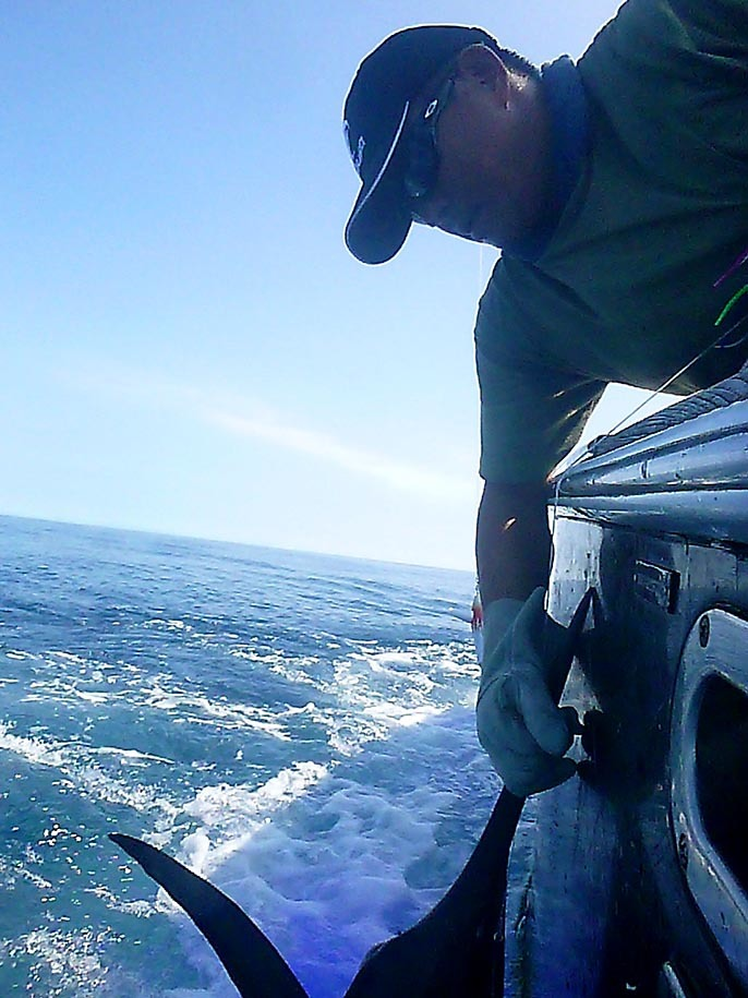 BZ艇さんが遠州灘でトータル5本_f0009039_17452662.jpg
